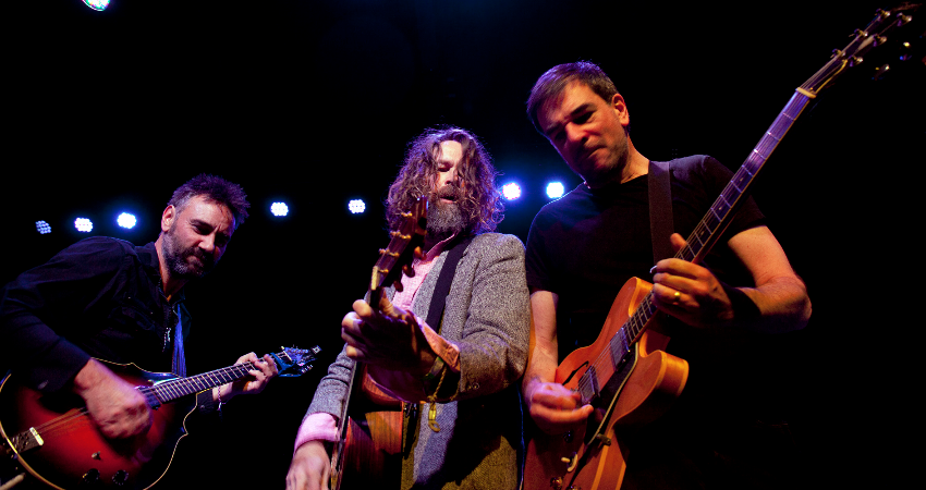 THE HOTHOUSE FLOWERS - HOLYWOOD HARMONY FESTIVAL